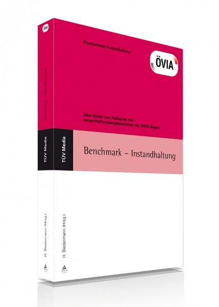 Benchmark - Instandhaltung (E-Book)