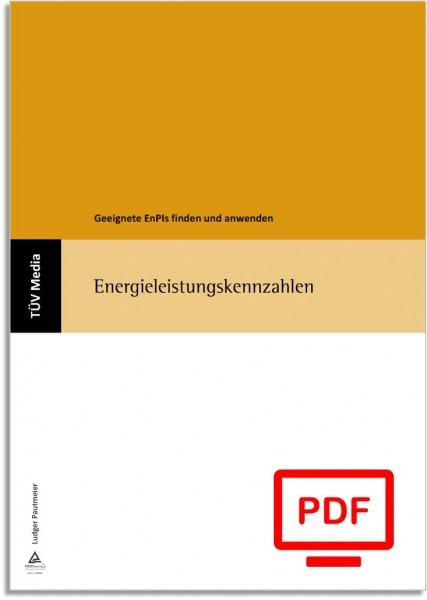 Energieleistungskennzahlen (E-Book)